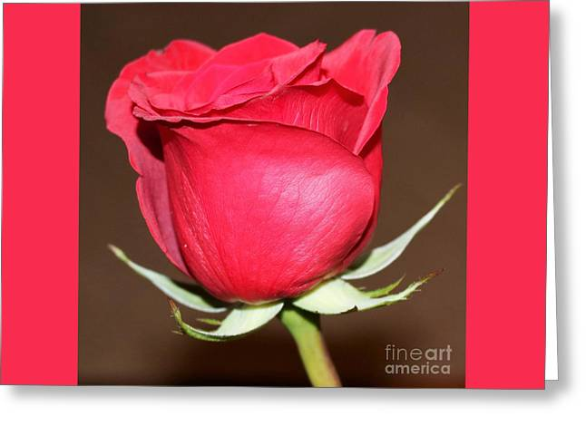 A Rose By Any Other Name... Greeting Card