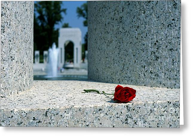 A Rose Memento At The World War II Memorial In Washington Dc Greeting Card