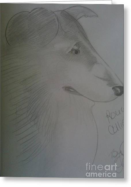 A Rough Collie Dog Greeting Card