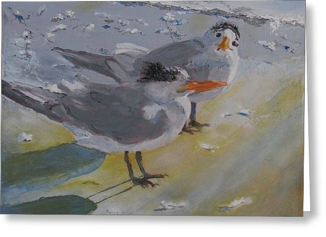 A Royal Tern Greeting Card by Libby  Cagle