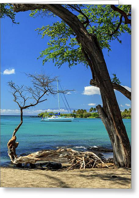 A Sailboat In Anaehoomalu Bay Greeting Card by James Eddy