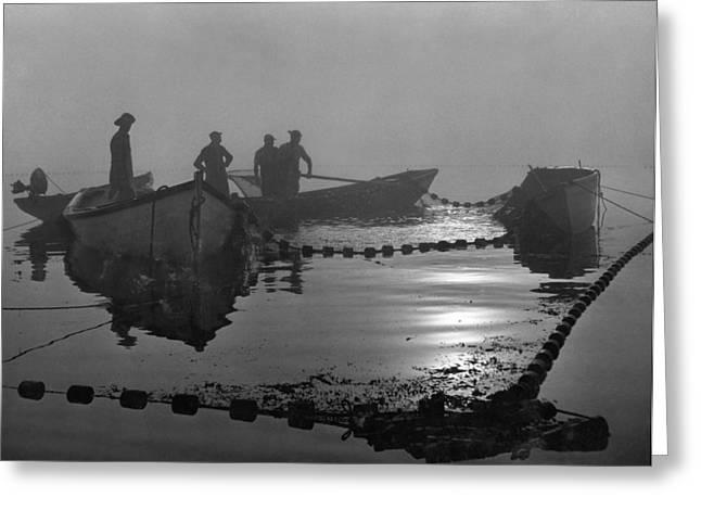 Period Photography Greeting Cards - A Sardine Fleet Working Nets Greeting Card by Luis Marden