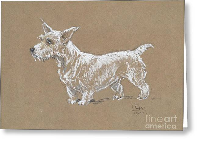 A Sealyham Terrier Greeting Card by MotionAge Designs