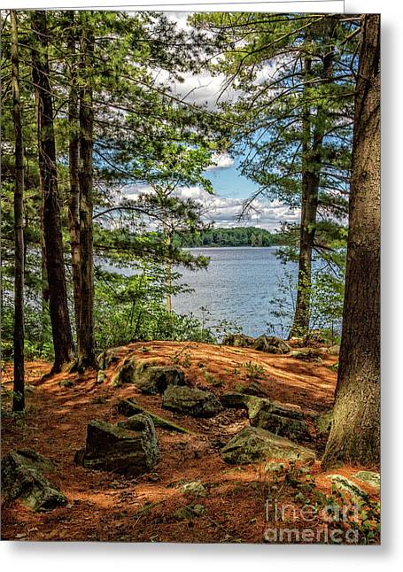 A Secluded Spot Greeting Card