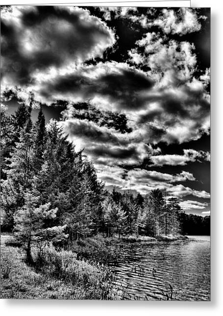 A September Afternoon At Twin Ponds Greeting Card by David Patterson
