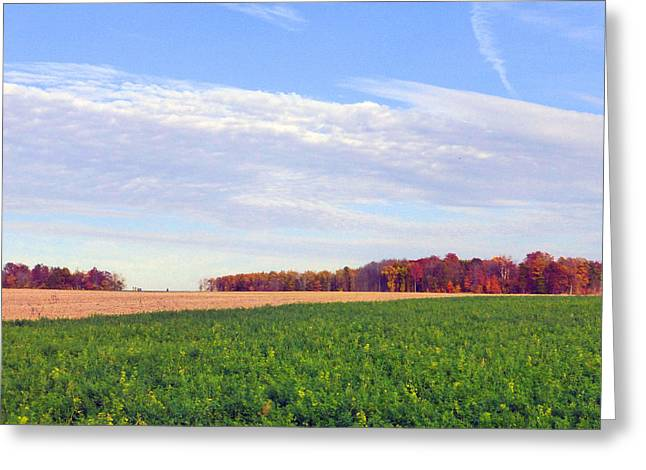 A Serene Autumn Landscape 2015 Greeting Card