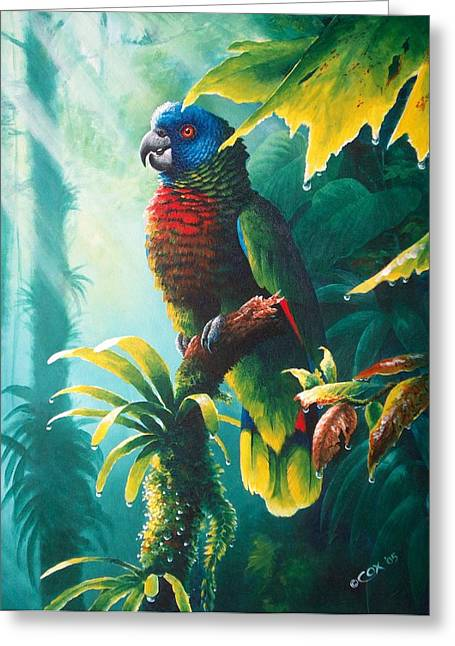 A Shady Spot - St. Lucia Parrot Greeting Card by Christopher Cox