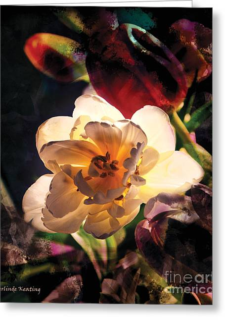A Shining Beauty Greeting Card by Gerlinde Keating - Galleria GK Keating Associates Inc