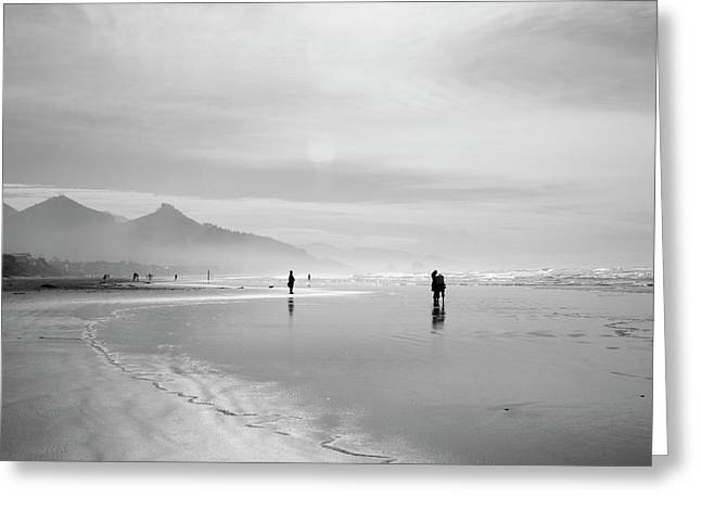 A Silver Day On The Beach Greeting Card by Dan Dooley