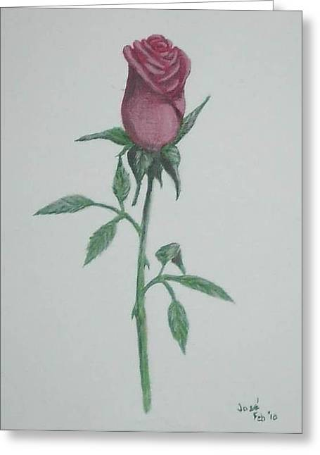 Greeting Card featuring the painting A Single Red Rose by Hilda and Jose Garrancho