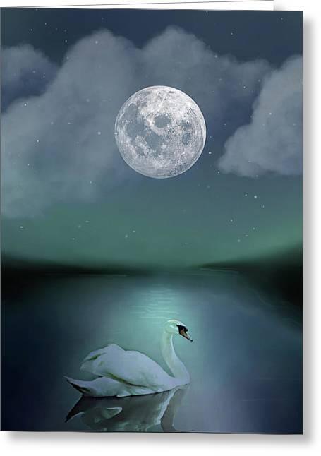 A Single Swan Greeting Card