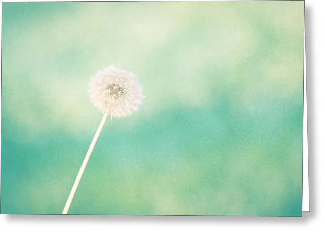 Extra Large Prints Greeting Cards - A Single Wish Greeting Card by Amy Tyler