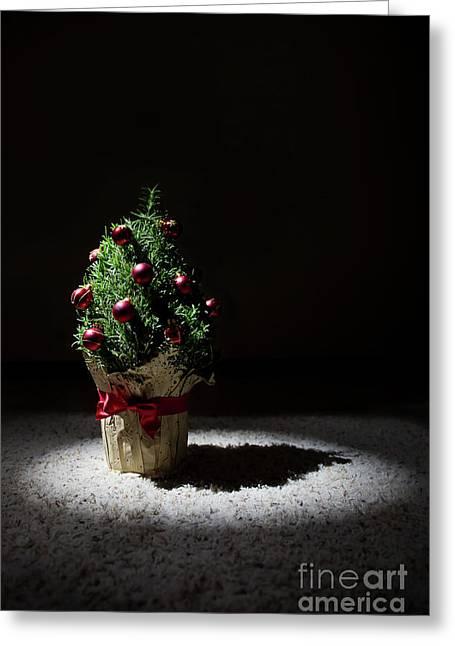 a small Christmas tree Greeting Card by Masako Metz