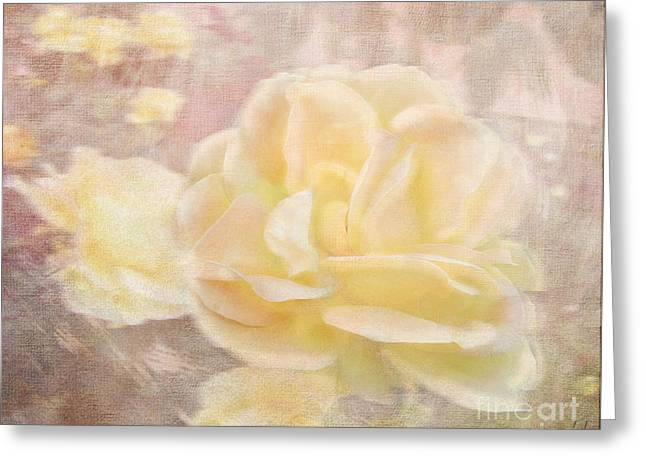 A Softer Rose Greeting Card by Victoria Harrington