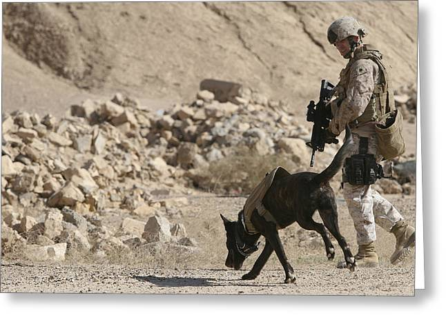 Dog Handler Greeting Cards - A Soldier And His Dog Search An Area Greeting Card by Stocktrek Images