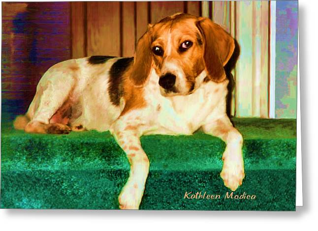 Greeting Card featuring the photograph A Special Beagle by KLM Kathel