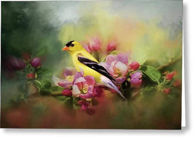 A Splash Of Joy Bird Art Greeting Card