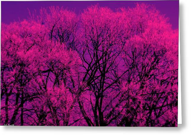 A Splash Of Purple Greeting Card by Ed Smith