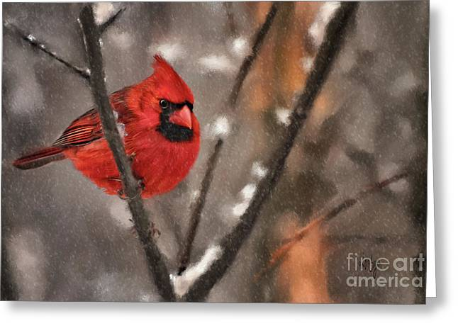 A Spot Of Color Greeting Card by Lois Bryan