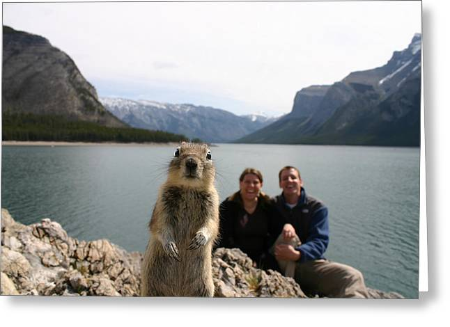 A Squirrel Takes The Shot By Tripping Greeting Card