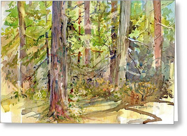 A Stand Of Trees Greeting Card