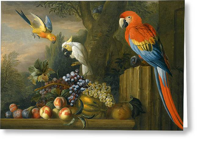 A Still Life With Fruit Parrots And A Cockatoo Greeting Card by Jakob Bogdani