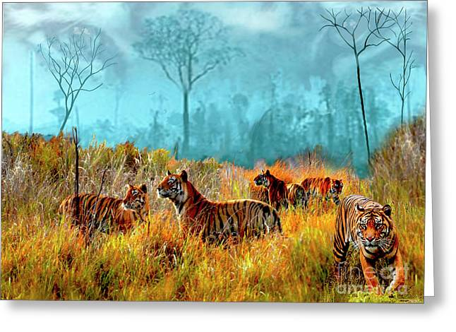 A Streak Of Tigers Greeting Card