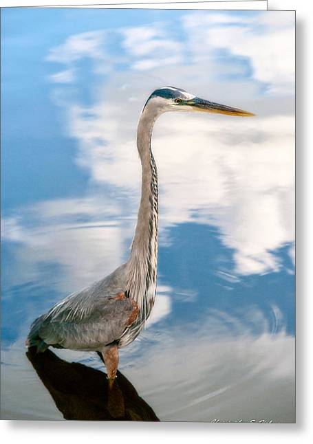 Greeting Card featuring the photograph A Stroll Among The Clouds by Christopher Holmes