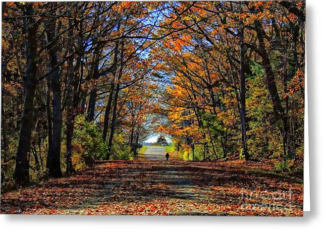A Stroll Through Autumn Colors Greeting Card by Marcia Lee Jones