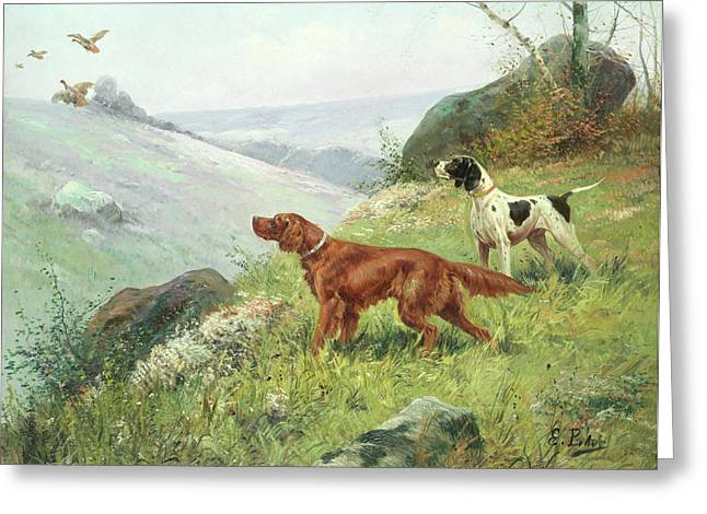 A Study Of Gun Dogs Greeting Card