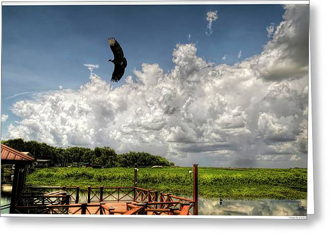 A Summer Day At The Hammock Greeting Card by Rogermike Wilson