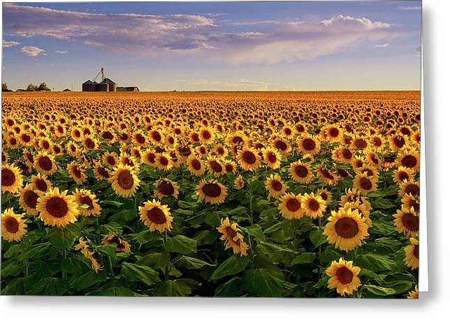 A Summer Evening In Rural Colorado Greeting Card