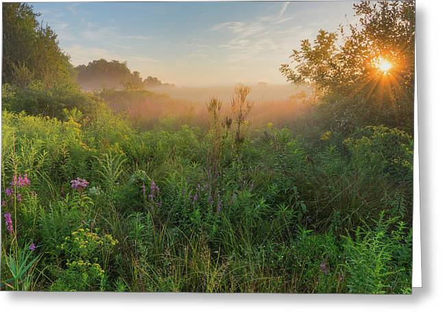 A Summer Morning 2016 Square Greeting Card