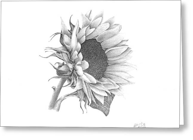 A Sunflowers Beauty Greeting Card