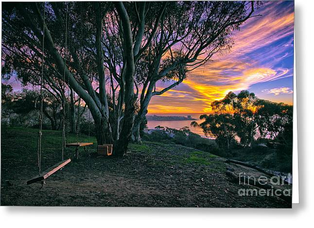 A Swinging Sunset From The Secret Swings Of La Jolla Greeting Card