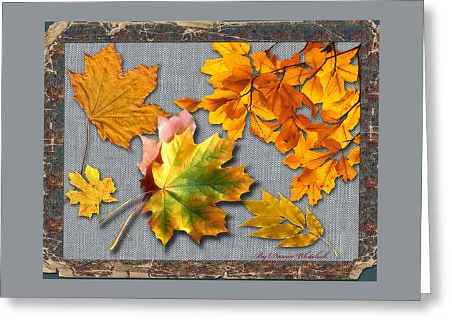 A Taste Of Fall Greeting Card by Doreen Whitelock