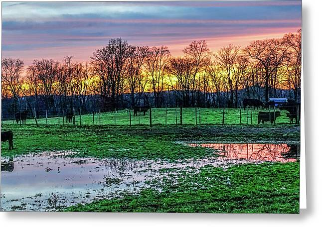A Time For Reflection Greeting Card by Jeffrey Friedkin