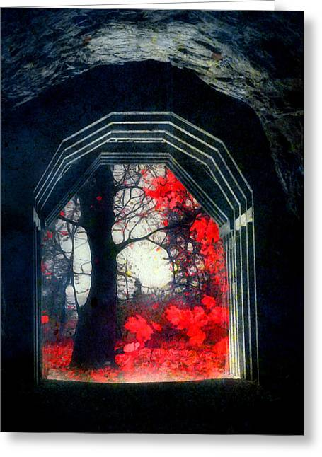 A Touch Of Red Greeting Card by Tara Turner