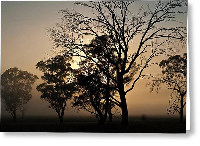 Greeting Card featuring the photograph A Tree As Lovely As A Poem by Odille Esmonde-Morgan