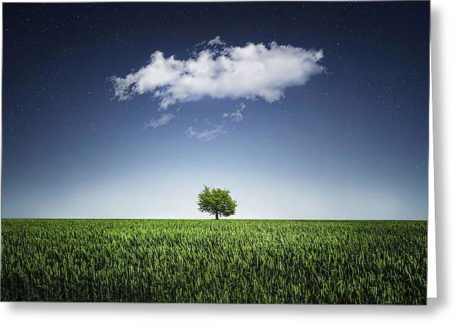 A Tree Covered With Cloud Greeting Card by Bess Hamiti