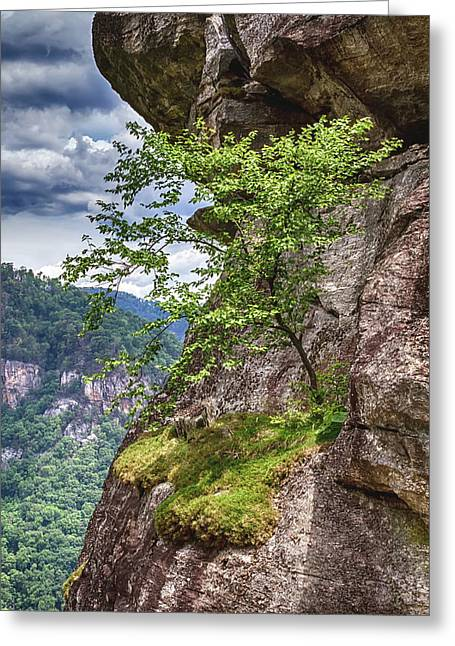 A Tree Grows In Chimney Rock Greeting Card