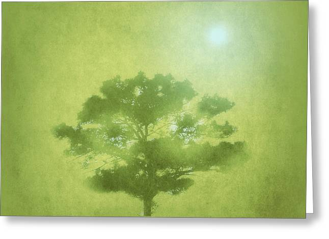 A Tree In The Pasture Greeting Card