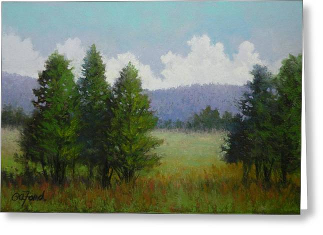 A Tree's View Greeting Card by Paula Ann Ford