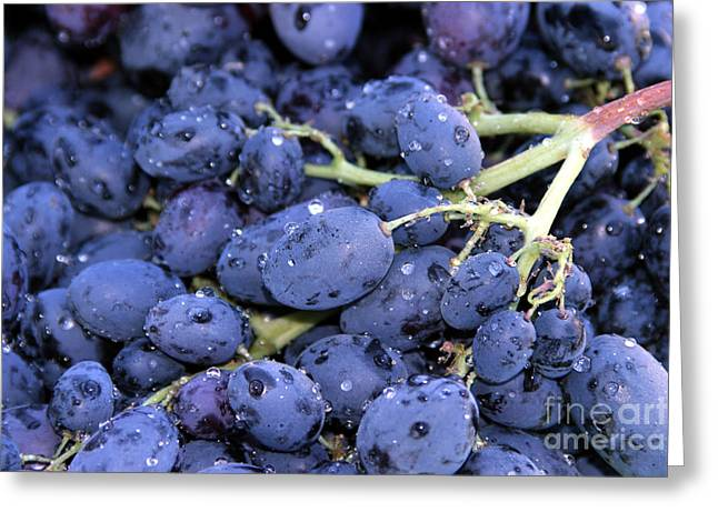 A Trip Through The Farmers Market Featuring Purple Grapes. Greeting Card by Michael Ledray