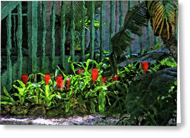 A Tropical Florida Landscape Greeting Card by HH Photography of Florida