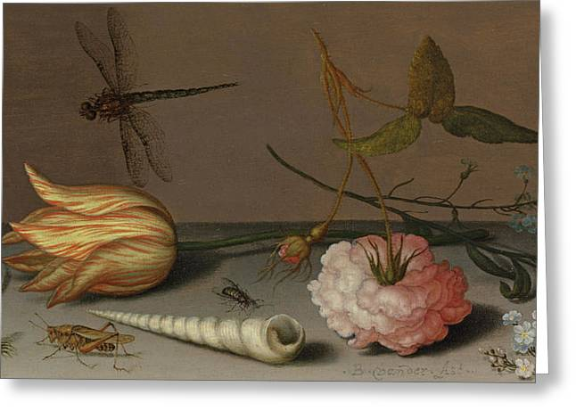 A Tulip, A Carnation, Spray Of Forget-me-nots, With A Shell, A Lizard And A Grasshopper, On A Ledge Greeting Card by Balthasar van der Ast