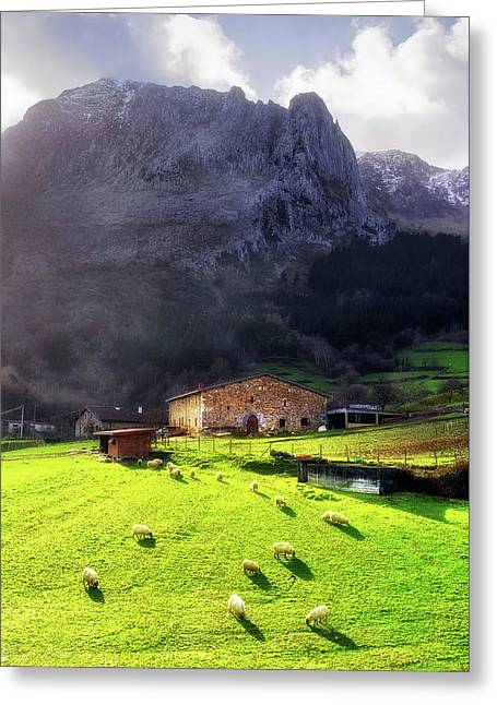 A Typical Basque Country Farmhouse With Sheep Greeting Card