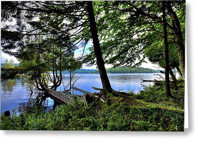 Greeting Card featuring the photograph A View From Covewood by David Patterson
