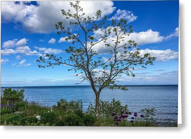 A Walk Along Lake Michigan Greeting Card