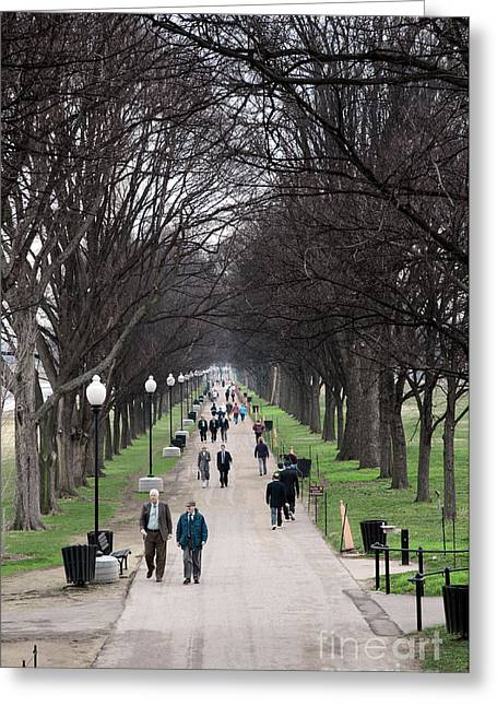 A Walk Along The National Mall In Washington Dc Greeting Card